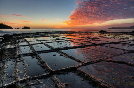 The Tessellated Pavement from Tasmania